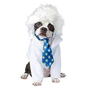 Al-bark Einstein Pet Costume – L