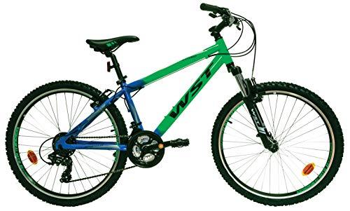 WST Cosmo Bicicleta de montaña, Hombre, Verde, 26'