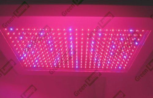 Vert Lampe 300 W LED Grow Light Panneau hydropic plantes rouge/orange/bleu