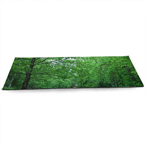 NA Spain Parks Trail Trees Urkiola País Vasco Naturaleza Esterilla de yoga con bolsa de malla de yoga ecológica antideslizante para pilates