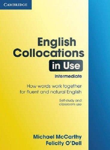 English Collocations in Use Intermediate (Face2face S.)の詳細を見る