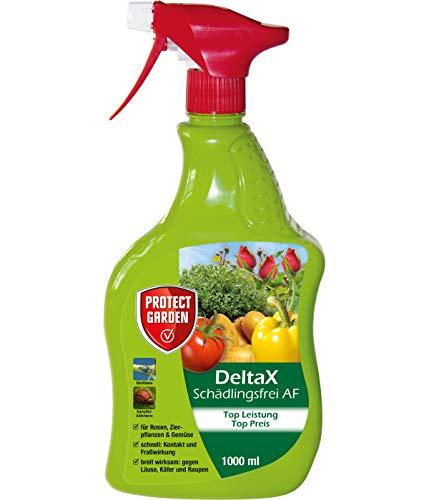 PROTECT GARDEN DeltaX Schädlingsfrei AF (ehem. Bayer Garten Decis) gegen Schädlinge wie Blattläuse und Weiße Fliege an Rosen, Gemüse und Zierpflanzen, anwendungsfertiges Spray, 1 L