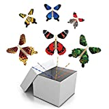 BFY Magic Flying Butterfly Wind Up Toys for Card, Gag Gifts for Kids Great Surprise  Colorful Butterfly in Book Greeting Card Books for Wedding Party (5 Pcs)