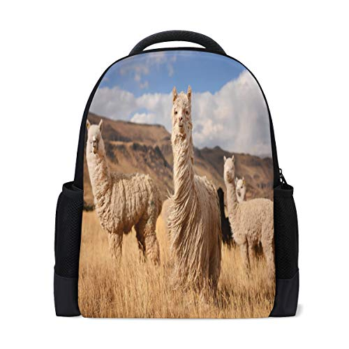 School Bag, Alpacas in Andes Mountains School Laptop Backpack Casual Daypack Travel Backpack Student Book Bags
