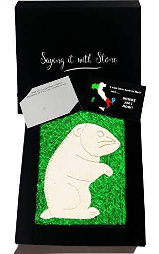 Hamster aus Stein -Symbol für Spaß, Glück, Jugend & Frivolität - Box und Nachrichtenkarte enthalten - Handgemacht in Italien - Enthält fossile Fragmente - Geschenk Sohn Tochter Kind
