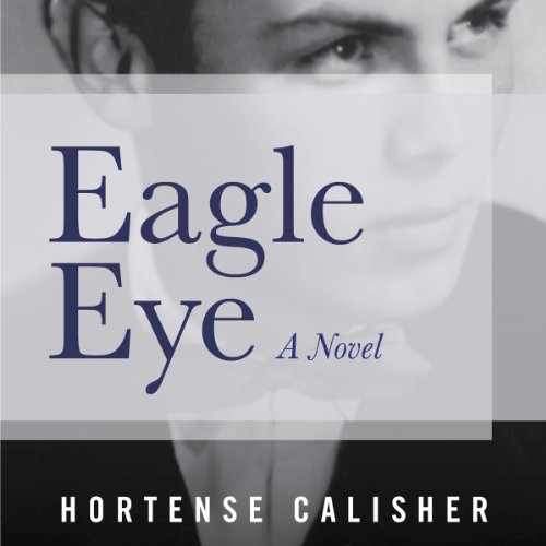Eagle Eye audiobook cover art