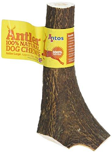 Antos Antler Natural Dog Chew - Large