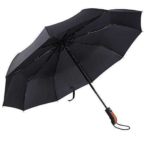 Bigking Paraguas, Paraguas de Viaje Plegable automático, Compacto, a Prueba de Viento, Paraguas de Lluvia portátiles, 10 Costillas