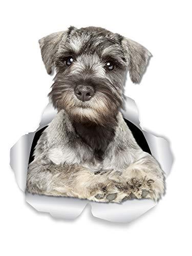 Winston & Bear Curious Schnauzer - Adhesivos de pared para perro, 2 unidades, diseño de perro Schnauzer miniatura para inodoro – Adhesivo para ventana de coche y parachoques 3D – Paquete al por menor