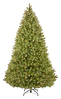 National Tree Company  Feel Real  Pre-lit Artificial Christmas Tree | Includes Pre-strung Multi-Color LED Lights PowerConnect and Stand | Bayberry Spruce - 9 ft