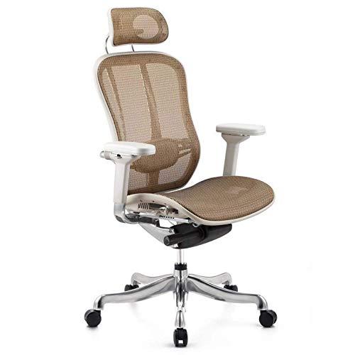 Computerstuhl Home Boss Studie Bürostuhl Taille Liegestützer Swivel Mesh Chair ruhig und komfortabel rotierender Hubwiderstand einfach, 1 MISU (Color : 2)