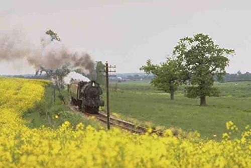 Inga metal sign 499091 kent & east sussex railway tenterden kent aluminium METAL TIN SIGN 8x12 inches