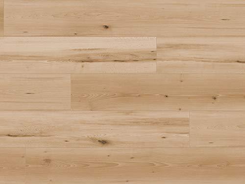 Kaindl Klick Laminat Buche | 2,4qm Laminat Bodenbelag Beech Swaran ✓schnelle klick Montage ✓klassisch & authentisch ✓für zeitloses & modernes Wohnen | Buche Klicklaminat 8mm