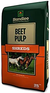 beet treats for horses