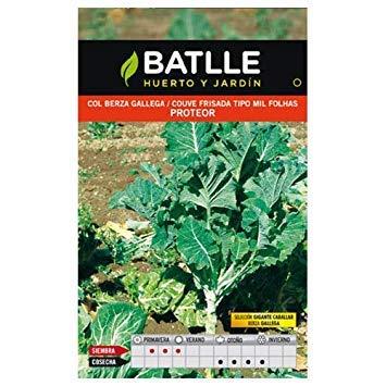 Batlle Vegetable Seeds - Cavolfiore Gigante Caballar Proteor (10G)