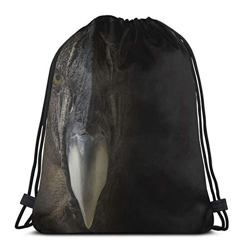 Affordable shop Andes Condor Bird Portrait Drawstring Backpack Bag Lightweight Gym Travel Yoga Casual Snackpack Shoulder bag for Hiking Swimming beach