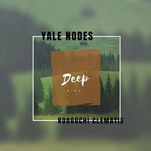 Yale Nodes