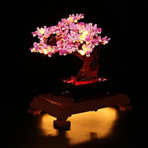 SESAY Customed - Juego de iluminación para árbol de bonsái Lego Expert Bonsái, juego de iluminación LED, compatible con Lego 10281 (sin juego de Lego)