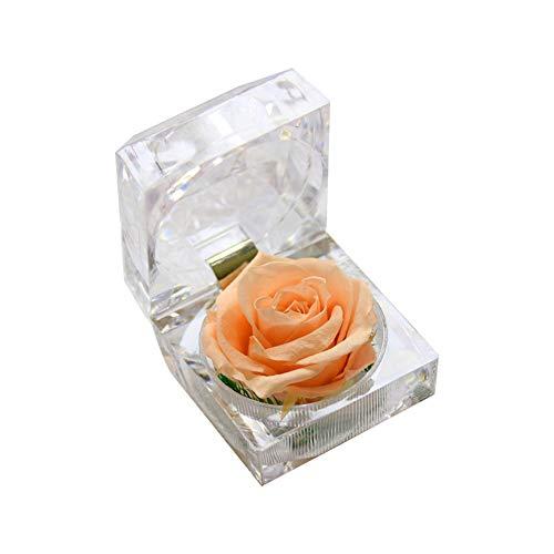 Ruiting Konservierte frische Blumen Rose mit Acrylbox Geschenk für Valentinstag Muttertag Geburtstagsgeschenk an Freundin Champagner Rose 1 Stück.