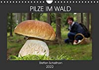 PILZE IM WALD (Wandkalender 2022 DIN A4 quer): Die schoensten Pilze aus den heimischen Waeldern (Monatskalender, 14 Seiten )