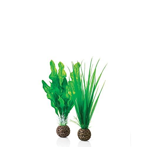 vattenväxter ikea
