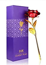 Quality bit Red & Golden Red Rose with Gift Box and A Nice Carry Bag - Best Gift to Express Love On Valentine's Day, Rose Day Or Decor Purpose Specialy for Your Love One
