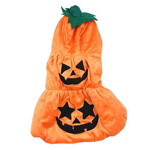 VILLCASE Disfraz de calabaza para Halloween, disfraz con sombrero para perros, cachorros,...
