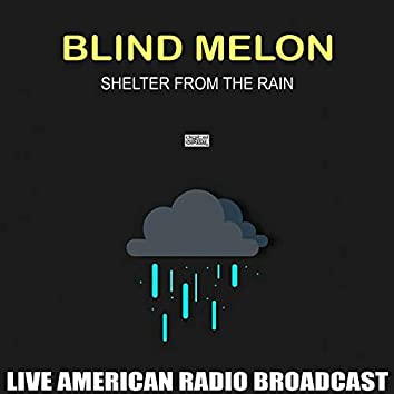 Shelter From The Rain (Live)