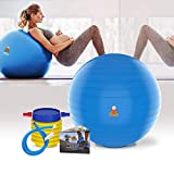 Lazy Monk Exercise Ball 55cm, 65cm (22, 26 inch) Fitness Desk Sitting Chair | Pregnancy Ball Anti-Burst Pelota de Yoga Workout Pilates Balance Gym Ball w/Foot Pump, Extra Pin | Excersize Swiss Ball
