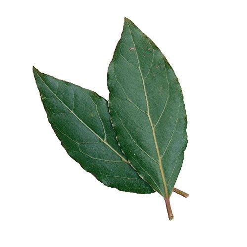 Organic Bay Leaves, 0.75 oz Clamshell