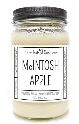 All American Farm Raised Mason Jar Candles. 16 Ounces Over 80 Hour Burn. 100% Natural Soy Wax Candle. (MCINTOSH Apple)