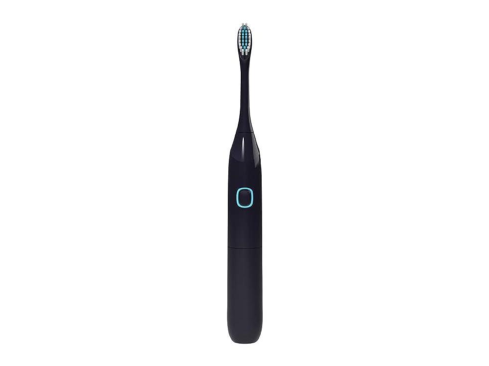 器官セマフォメロドラマカップルソフトヘアホームホワイトニング充電式でない大人の子供ソニック電動歯ブラシ(1歯ブラシ+ 2ブラシヘッド)
