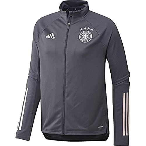 adidas Herren Jacke DFB TR JKT, Onix, L, FS7038