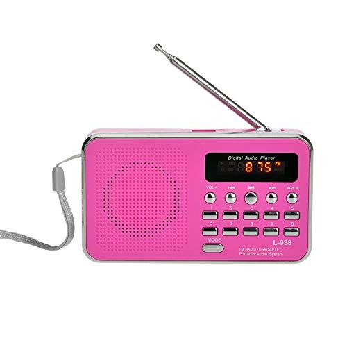 ZZJ Portable HiFi Carte Haut-Parleur stéréo, Radio FM numérique Multimédia Camping Randonnée Sports de Plein air Lecteur de Musique,C
