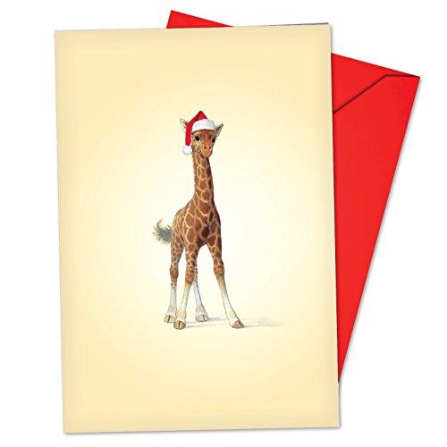 12 Boxed Christmas Zoo Babies Giraffe Holiday Notes with Envelopes 4.63 x 6.75 inch, Cute Baby Giraffe Wearing Santa Hat Christmas Cards, Adorable Baby Animal Seasonal Greeting Cards B6726FXSG