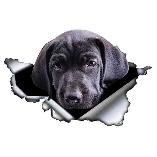 Pegatinas Coche 3D Pet Pet PETICA Etiquetas DE Coche DE LARADA DE Metal RAIDA REFLEXIBLE Motorycle Etiquetas DE MOTORIA 13X8CM (Color : 3)