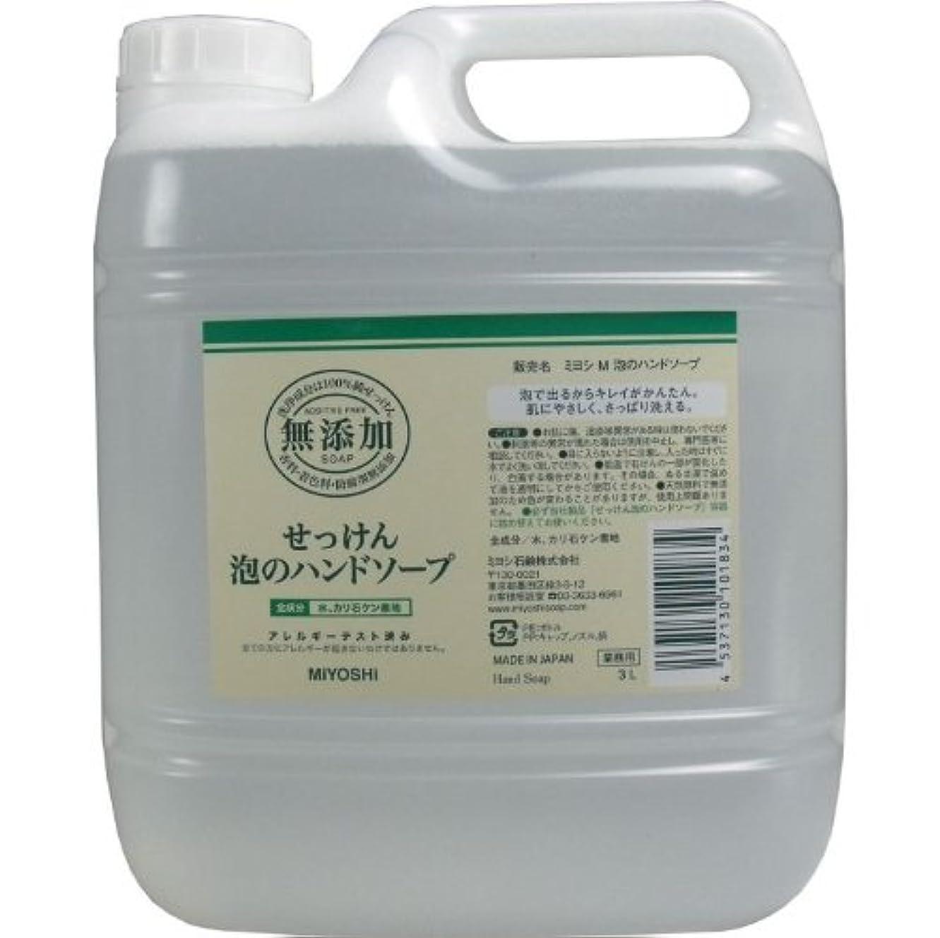 飛行機未払いカストディアン泡で出るからキレイが簡単!家事の間のサッと洗いも簡単!香料、着色料、防腐剤無添加!(業務用)3L【3個セット】