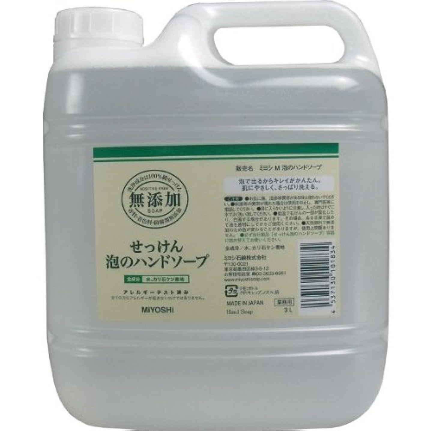 シンプルさ放送に対して泡で出るからキレイが簡単!家事の間のサッと洗いも簡単!香料、着色料、防腐剤無添加!(業務用)3L【3個セット】