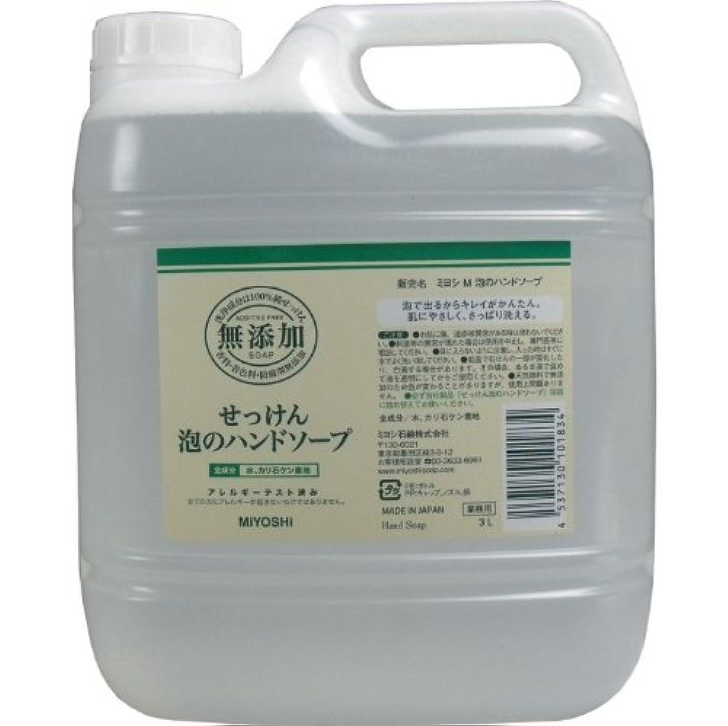 日付付き当社倒錯泡で出るからキレイが簡単!家事の間のサッと洗いも簡単!香料、着色料、防腐剤無添加!(業務用)3L