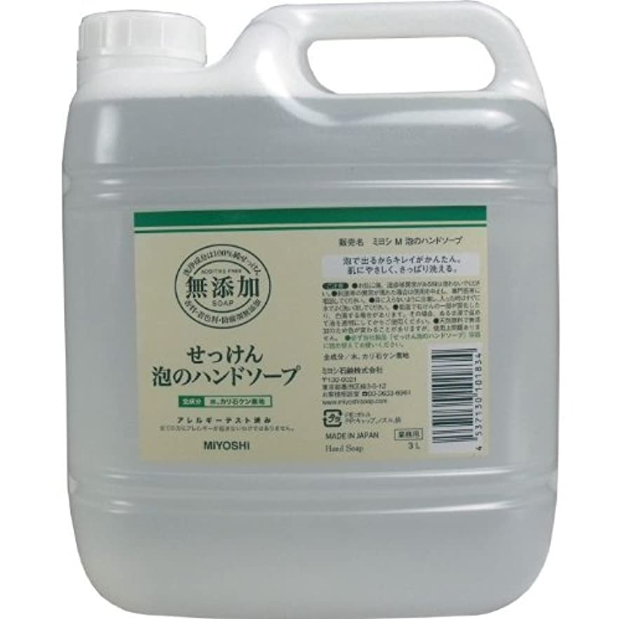 生産性ピボット晴れ泡で出るからキレイが簡単!家事の間のサッと洗いも簡単!香料、着色料、防腐剤無添加!(業務用)3L