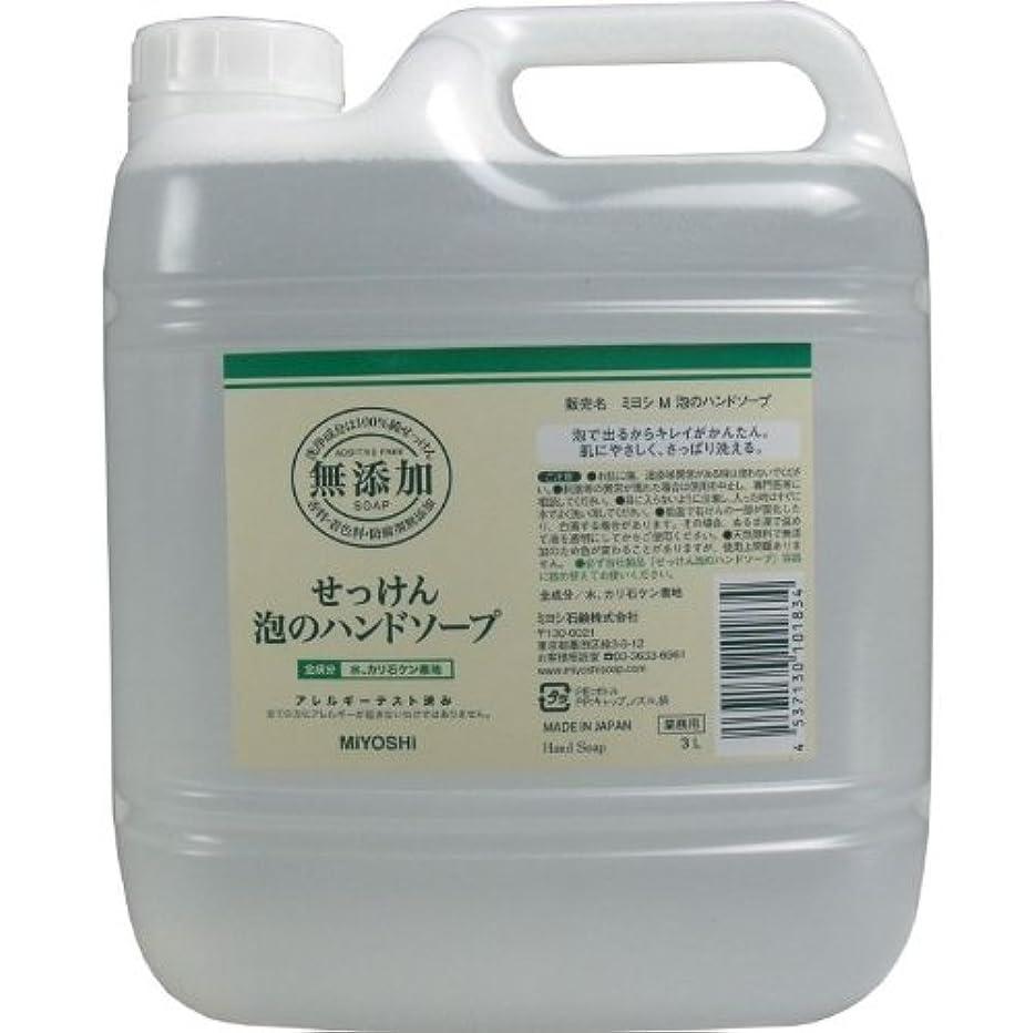 巨人メナジェリースリム泡で出るからキレイが簡単!家事の間のサッと洗いも簡単!香料、着色料、防腐剤無添加!(業務用)3L【4個セット】