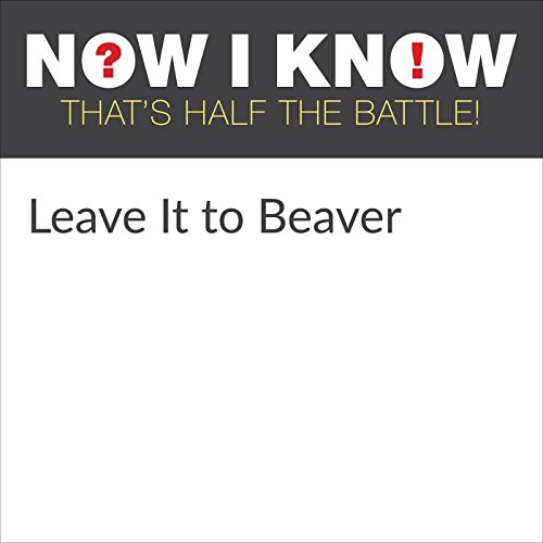 Leave It to Beaver Audiobook By Dan Lewis cover art