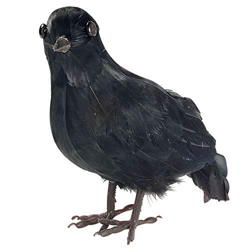 Widmann 3063C – Krähe mit echten Federn, schwarz, Dekoration, Accessoire, für Seeräuberkostüme, Piraten, Motto Party, Karneval, Halloween