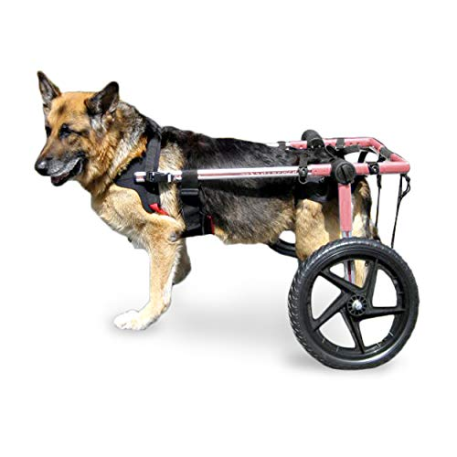 Walkin Wheels Large Dog Wheelchair