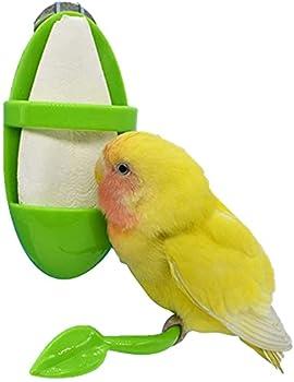 Conteneur de nourriture de colonne de mangeoire à oiseaux, suspendu dans la cage à oiseaux, nichoir automatique pour perroquets, perruches, perruches calopsittes, inséparables
