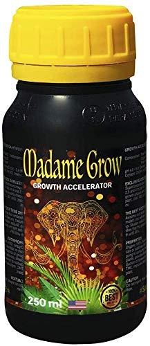 MADAME GROW / Raíz y Crecimiento/Formato EEUU/Fertilizante 420 / Raíces Fuertes y Sanas/Gran Crecimiento/Mayor Floración (250 ml)