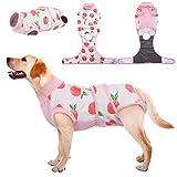 Kuoser Traje de Recuperación para Perros/Gatos, Vendajes para Heridas Abdominales para Perros, Collar Electrónico y Cono Sustitutos para Evitar Lamidas