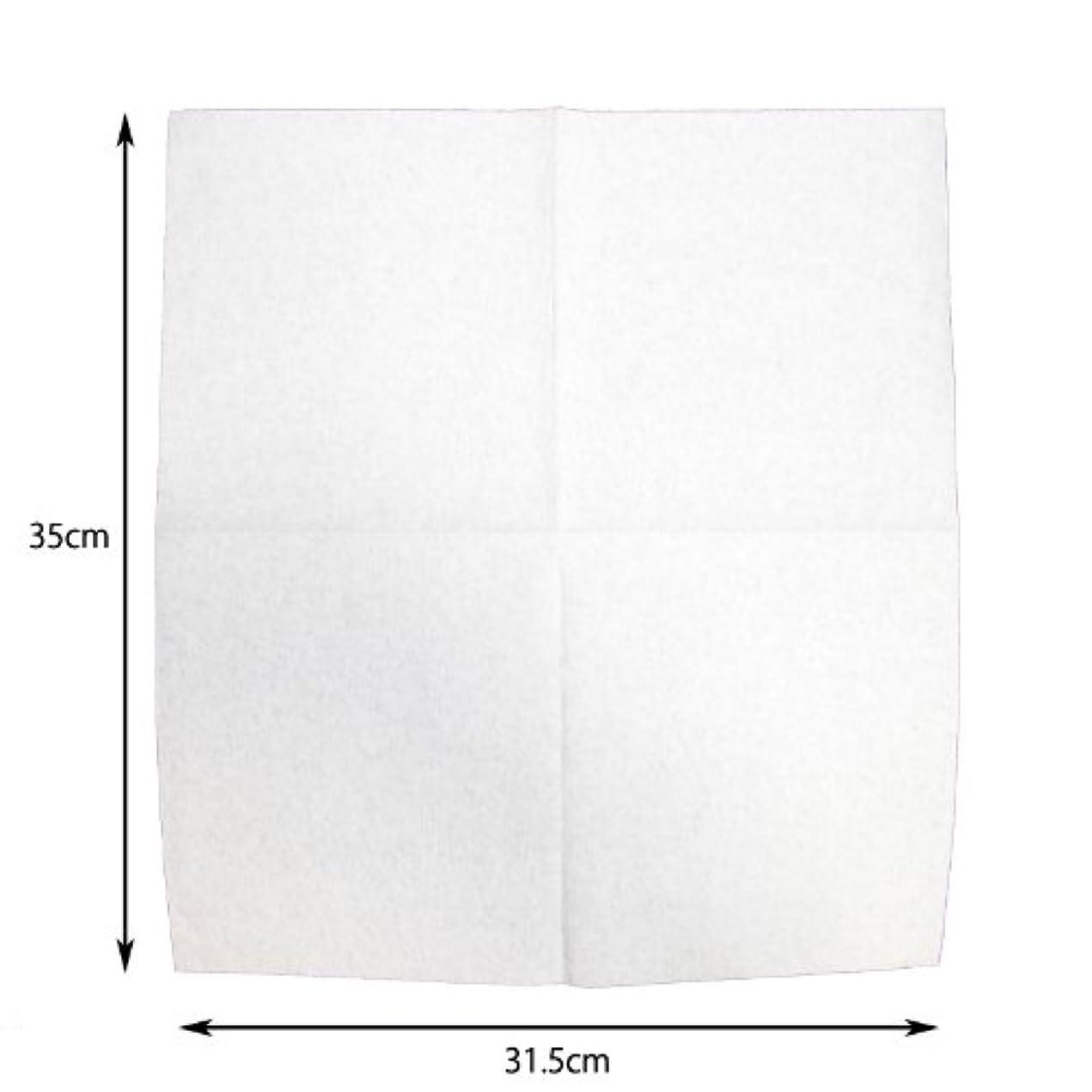 遅滞叫ぶ壁メカタオル MET(メカニック用ペーパータオル) V010