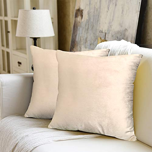 WEYON 2er Set Samt Kissenbezug Dekorative Dekokissen Kissenhülle mit Strapazierfähigem Verstecktem Reißverschluss für Sofa Schlafzimmer Auto 40X40cm Beige