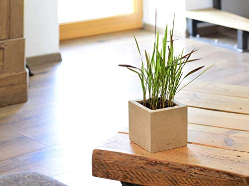 Beske-Manufaktur   Beton Pflanzentopf Blumentopf (13x13x13) inklusive Innentopf   Blumenkübel  Blumenschale   Übertopf   100% HandarbeitMade in Germany